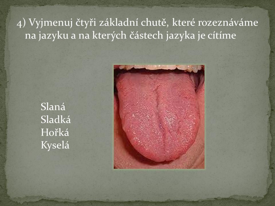 4) Vyjmenuj čtyři základní chutě, které rozeznáváme na jazyku a na kterých částech jazyka je cítíme Slaná Sladká Hořká Kyselá
