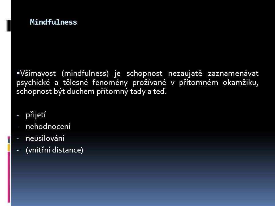 Mindfulness  Všímavost (mindfulness) je schopnost nezaujatě zaznamenávat psychické a tělesné fenomény prožívané v přítomném okamžiku, schopnost být d