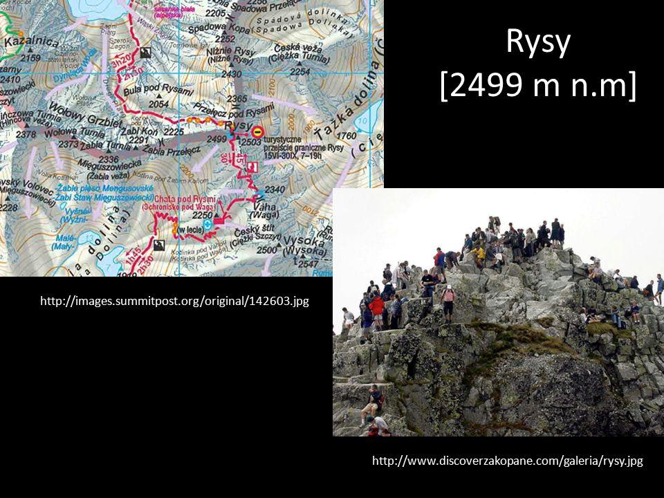 Rysy [2499 m n.m] http://images.summitpost.org/original/142603.jpg http://www.discoverzakopane.com/galeria/rysy.jpg