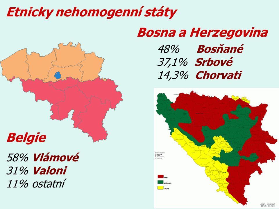 Etnicky nehomogenní státy 58% Vlámové 31% Valoni 11% ostatní Belgie 48% Bosňané 37,1% Srbové 14,3% Chorvati Bosna a Herzegovina