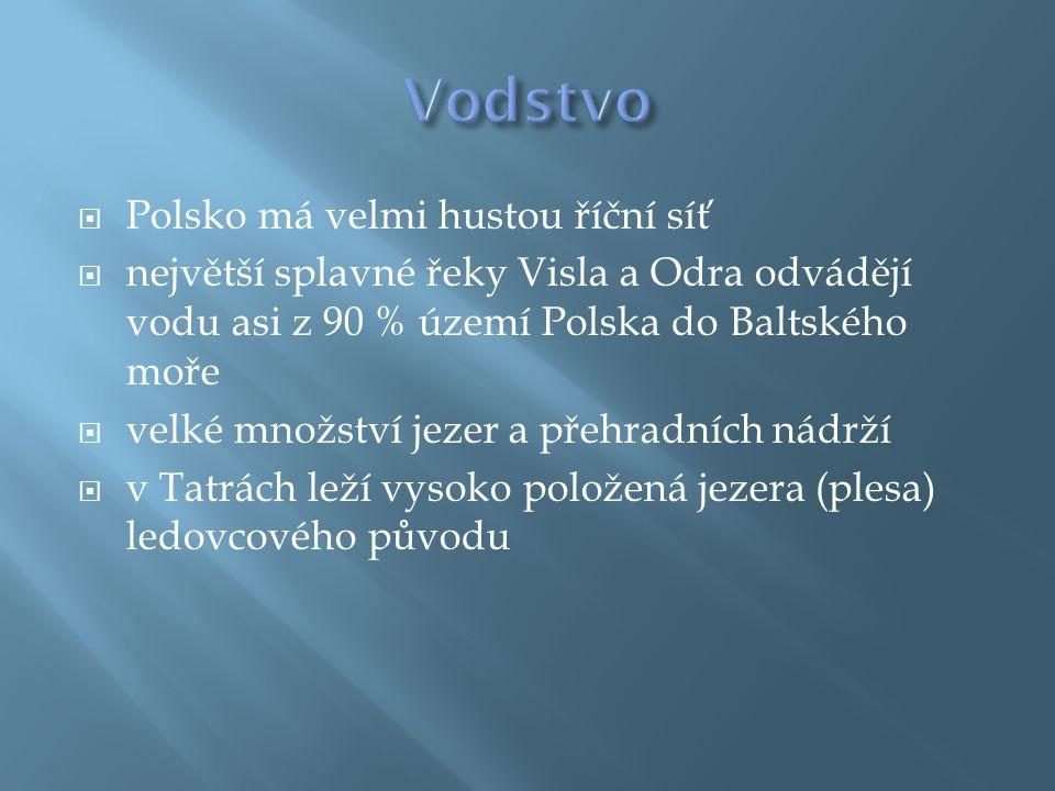  Polsko má velmi hustou říční síť  největší splavné řeky Visla a Odra odvádějí vodu asi z 90 % území Polska do Baltského moře  velké množství jezer a přehradních nádrží  v Tatrách leží vysoko položená jezera (plesa) ledovcového původu