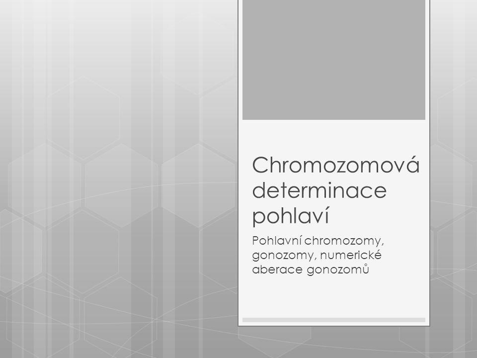 Chromozomová determinace pohlaví Pohlavní chromozomy, gonozomy, numerické aberace gonozomů