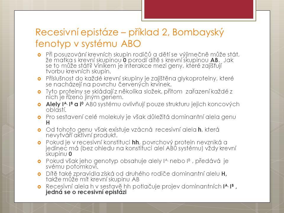 Recesivní epistáze – příklad 2, Bombayský fenotyp v systému ABO  Při posuzování krevních skupin rodičů a dětí se výjimečně může stát, že matka s krevní skupinou 0 porodí dítě s krevní skupinou AB.