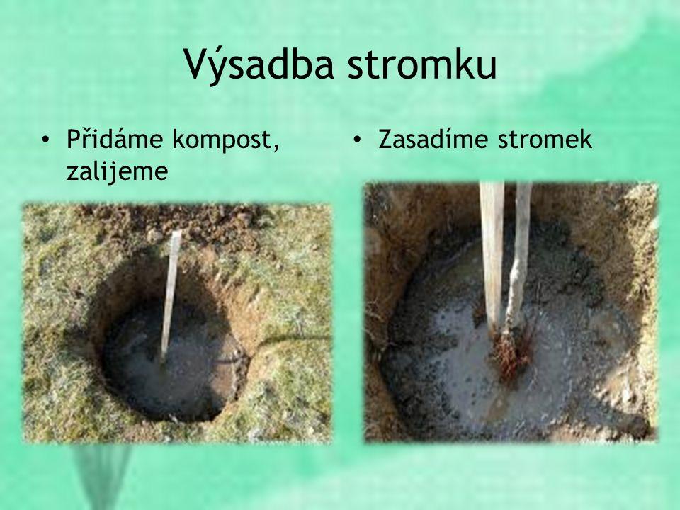 Výsadba stromku Přidáme kompost, zalijeme Zasadíme stromek