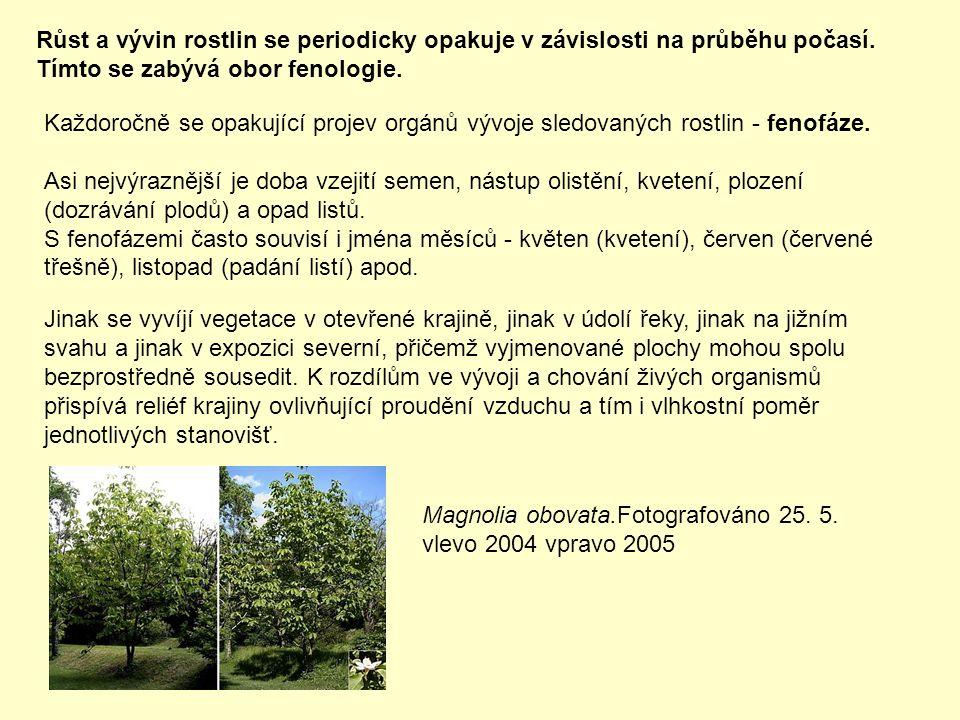 Růst a vývin rostlin se periodicky opakuje v závislosti na průběhu počasí.