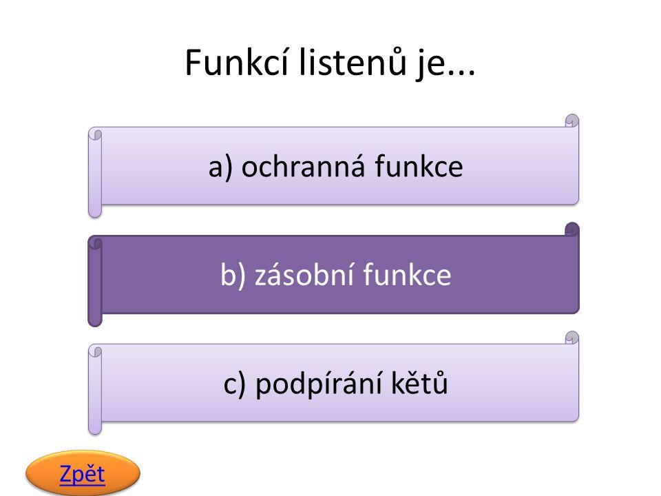 Funkcí listenů je... Zpět a) ochranná funkce b) zásobní funkce c) podpírání kětů