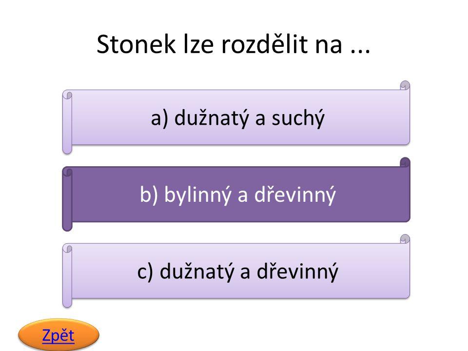Stonek lze rozdělit na... Zpět a) dužnatý a suchý b) bylinný a dřevinný c) dužnatý a dřevinný
