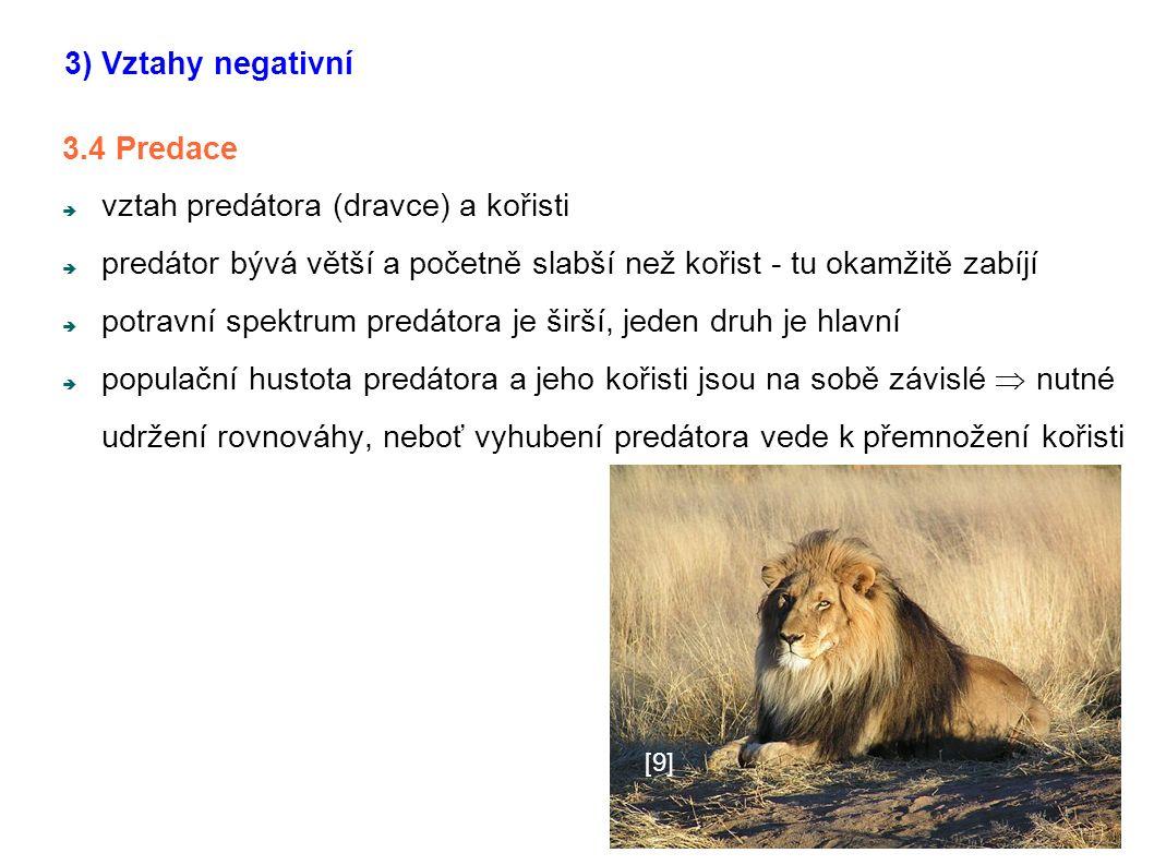 nvn 3.4 Predace  vztah predátora (dravce) a kořisti  predátor bývá větší a početně slabší než kořist - tu okamžitě zabíjí  potravní spektrum predát