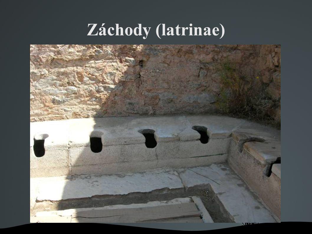 Záchody (latrinae)