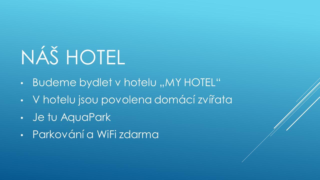"""NÁŠ HOTEL Budeme bydlet v hotelu """"MY HOTEL V hotelu jsou povolena domácí zvířata Je tu AquaPark Parkování a WiFi zdarma"""