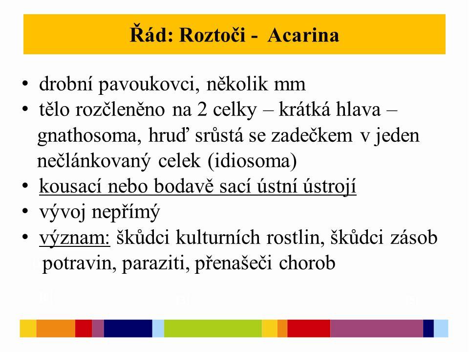 Řád: Roztoči - Acarina [1 ] [2 ] [3 ] [5 ] [6 ] drobní pavoukovci, několik mm tělo rozčleněno na 2 celky – krátká hlava – gnathosoma, hruď srůstá se zadečkem v jeden nečlánkovaný celek (idiosoma) kousací nebo bodavě sací ústní ústrojí vývoj nepřímý význam: škůdci kulturních rostlin, škůdci zásob potravin, paraziti, přenašeči chorob