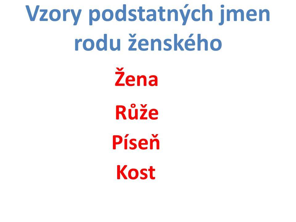 Vzory podstatných jmen rodu ženského Žena Růže Píseň Kost