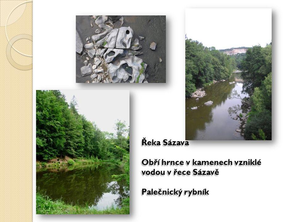 Řeka Sázava Obří hrnce v kamenech vzniklé vodou v řece Sázavě Palečnický rybník