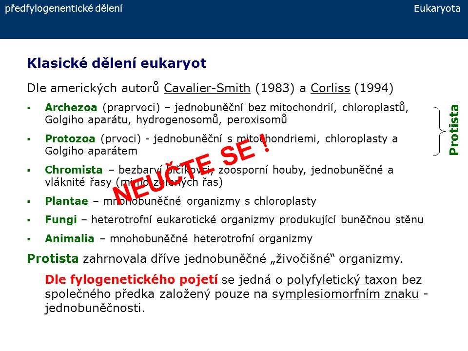 """Fylogenetické dělení eukaryot – nové: 6 """"říší fylogenetické dělení Eukaryota Opisthokonta: houby, mnohobuněční živočichové, někteří """"prvoci Amoebozoa: měňavky, hlenky, řada """"bičíkovců (pohyb hlavně bičíky) Rhizaria: """"bičíkovci a kořenonožci (pohyb hlavně panožkami) Excavata: většinou """"bičíkovci (např."""