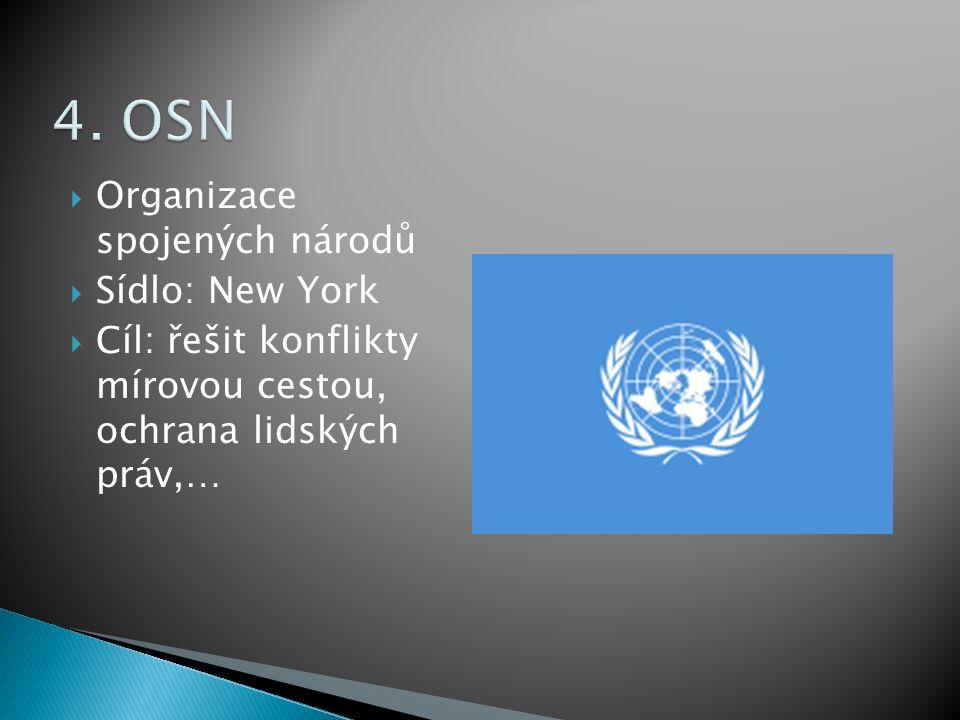  Organizace spojených národů  Sídlo: New York  Cíl: řešit konflikty mírovou cestou, ochrana lidských práv,…
