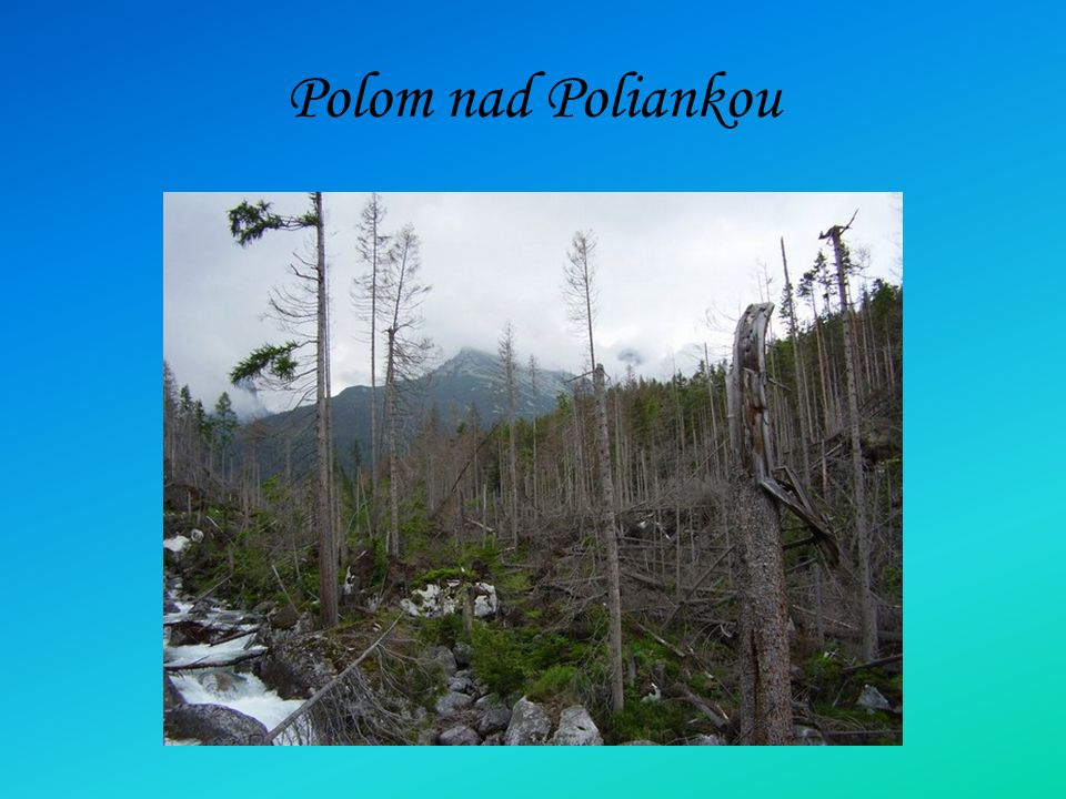 Polom nad Poliankou