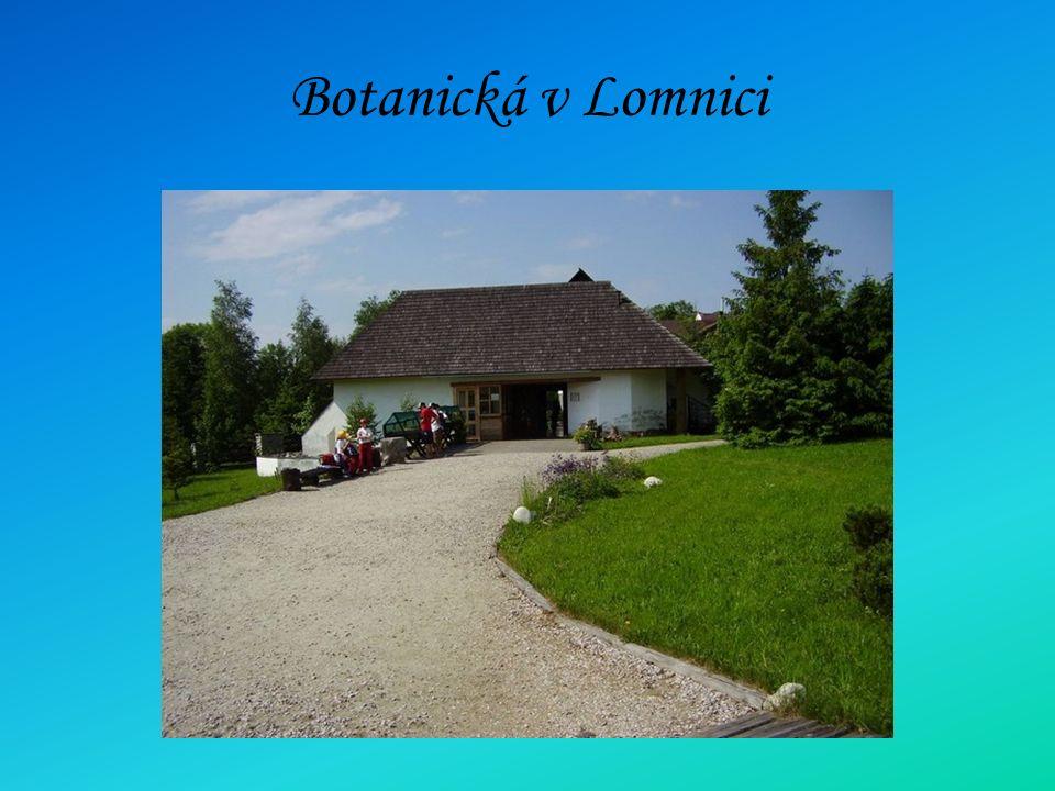 Botanická v Lomnici