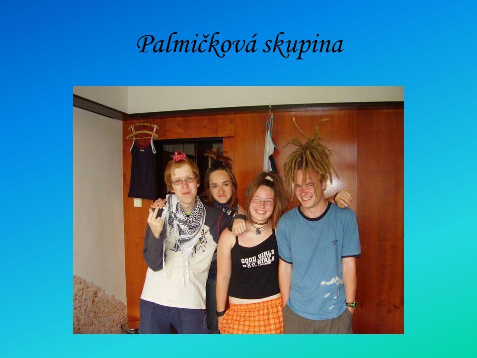 Palmičková skupina