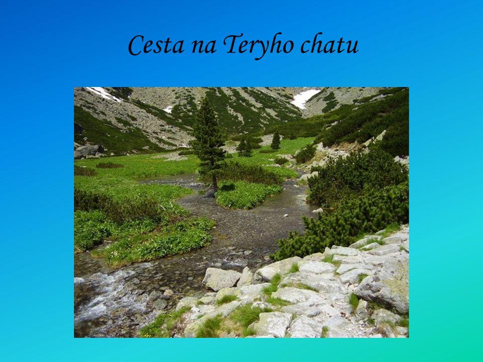 Cesta na Teryho chatu