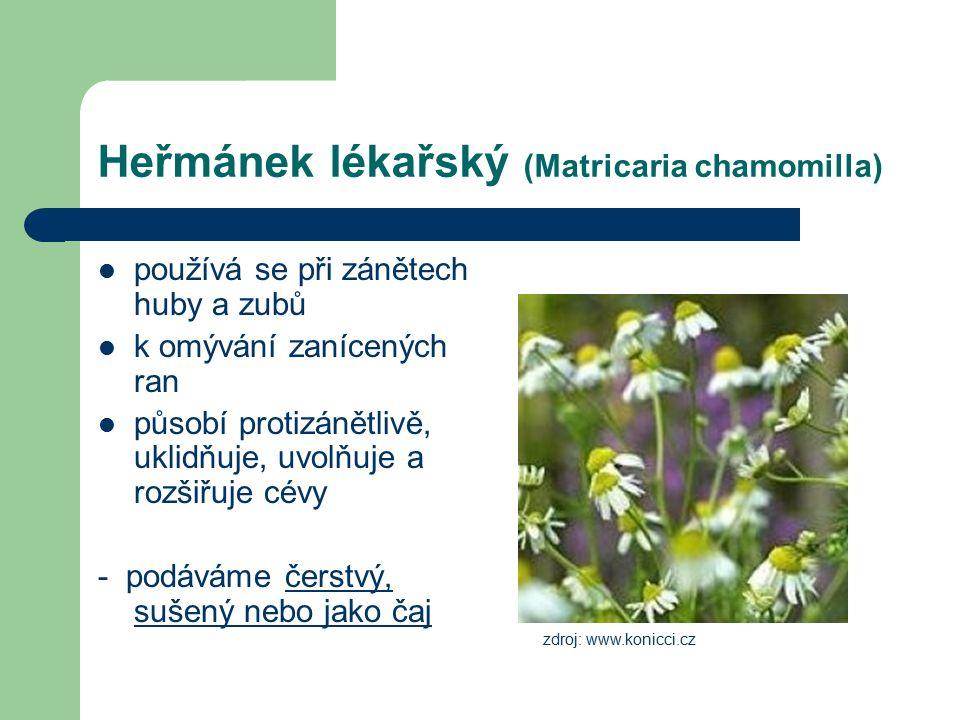Heřmánek lékařský (Matricaria chamomilla) používá se při zánětech huby a zubů k omývání zanícených ran působí protizánětlivě, uklidňuje, uvolňuje a rozšiřuje cévy - podáváme čerstvý, sušený nebo jako čaj zdroj: www.konicci.cz