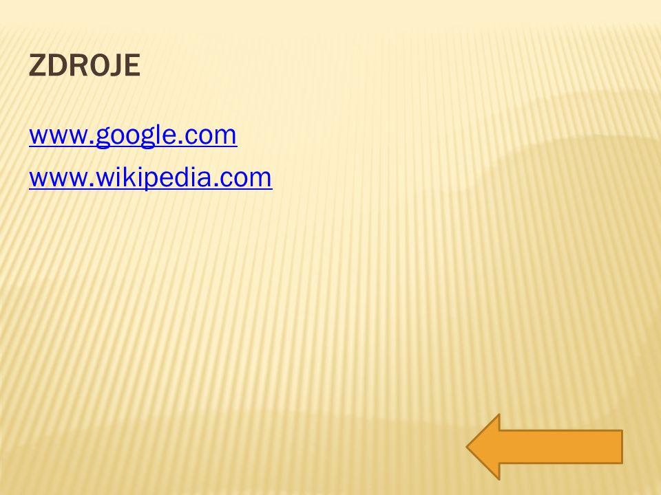 ZDROJE www.google.com www.wikipedia.com