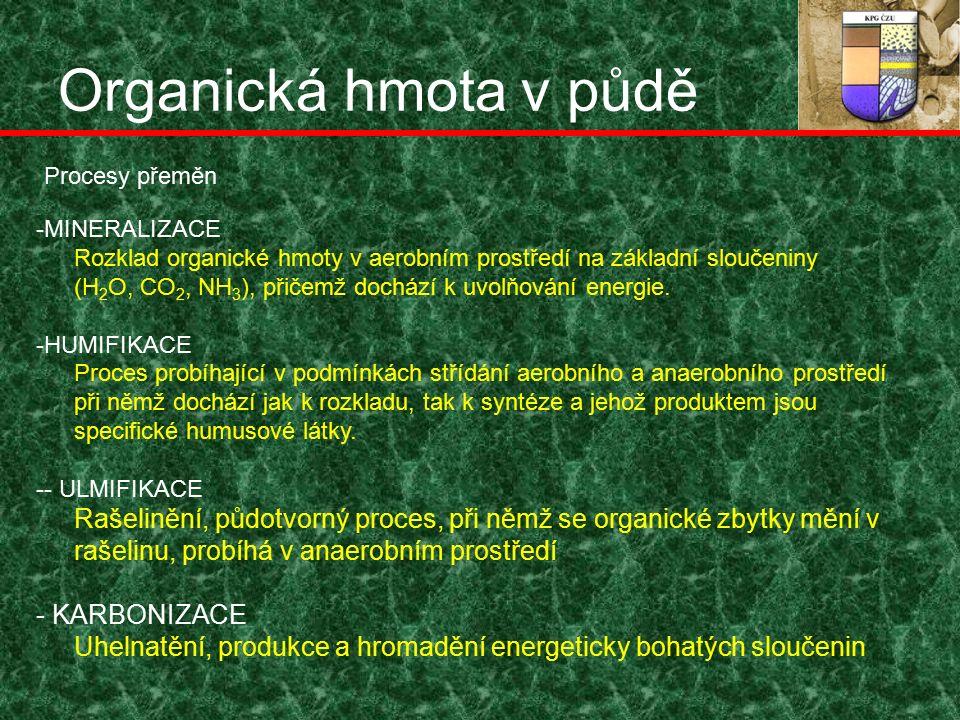 Organická hmota v půdě -MINERALIZACE Rozklad organické hmoty v aerobním prostředí na základní sloučeniny (H 2 O, CO 2, NH 3 ), přičemž dochází k uvolňování energie.