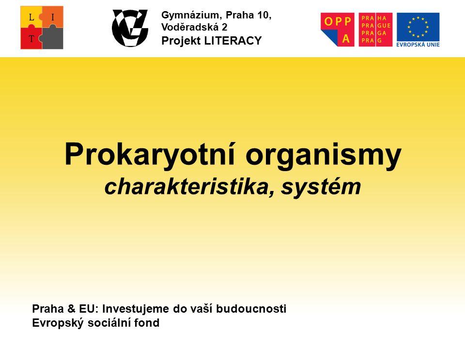 Praha & EU: Investujeme do vaší budoucnosti Evropský sociální fond Gymnázium, Praha 10, Voděradská 2 Projekt LITERACY Prokaryotní organismy charakteristika, systém