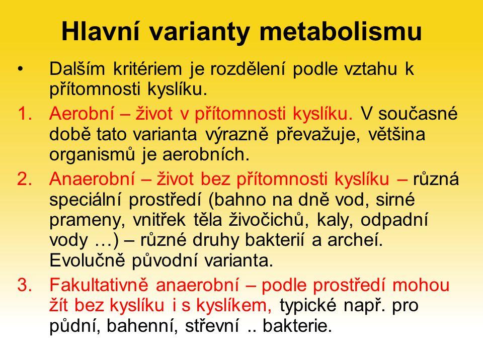 Hlavní varianty metabolismu Dalším kritériem je rozdělení podle vztahu k přítomnosti kyslíku.