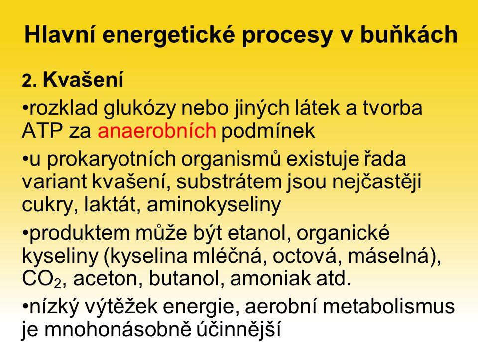 2. Kvašení rozklad glukózy nebo jiných látek a tvorba ATP za anaerobních podmínek u prokaryotních organismů existuje řada variant kvašení, substrátem