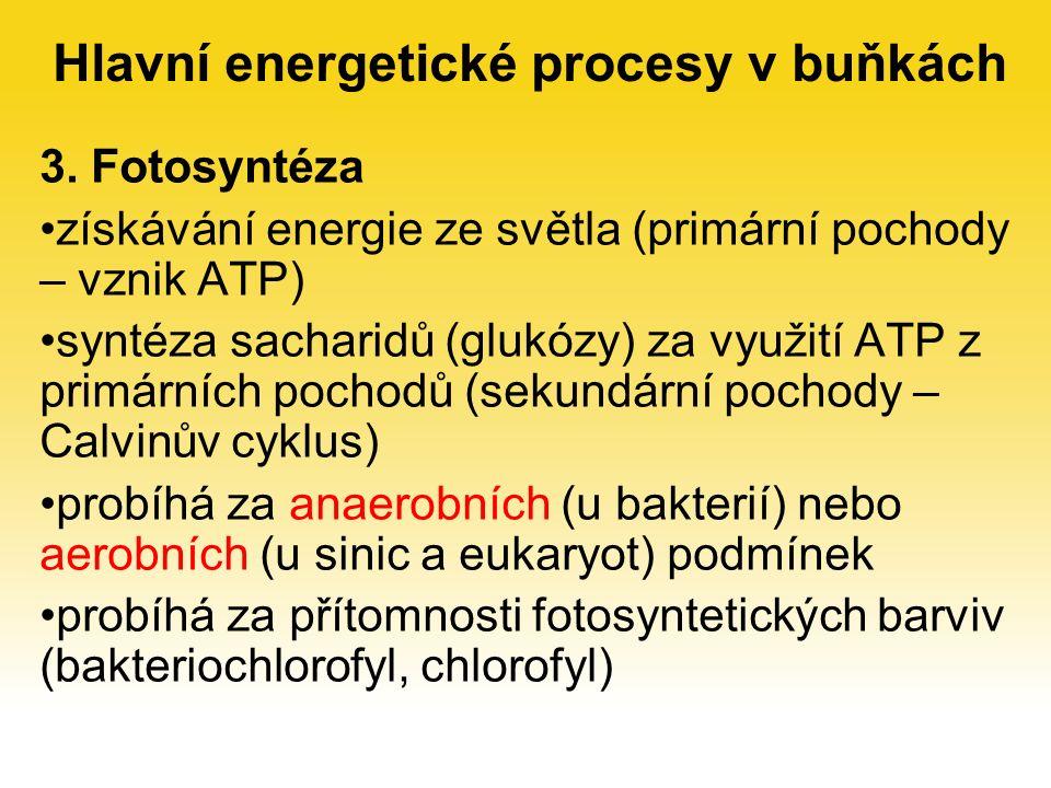 3. Fotosyntéza získávání energie ze světla (primární pochody – vznik ATP) syntéza sacharidů (glukózy) za využití ATP z primárních pochodů (sekundární