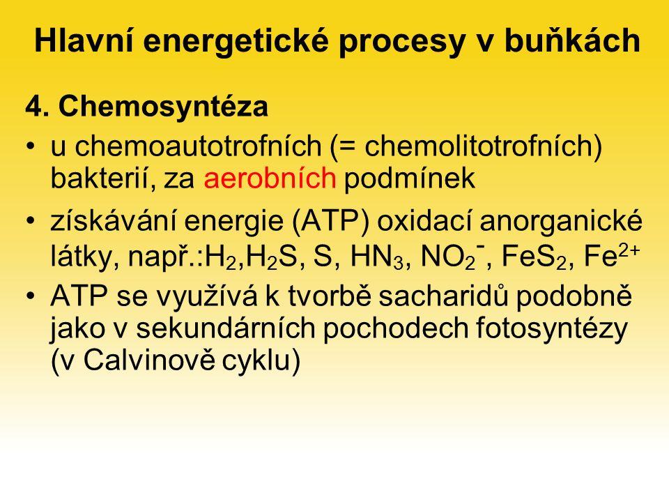 4. Chemosyntéza u chemoautotrofních (= chemolitotrofních) bakterií, za aerobních podmínek získávání energie (ATP) oxidací anorganické látky, např.:H 2