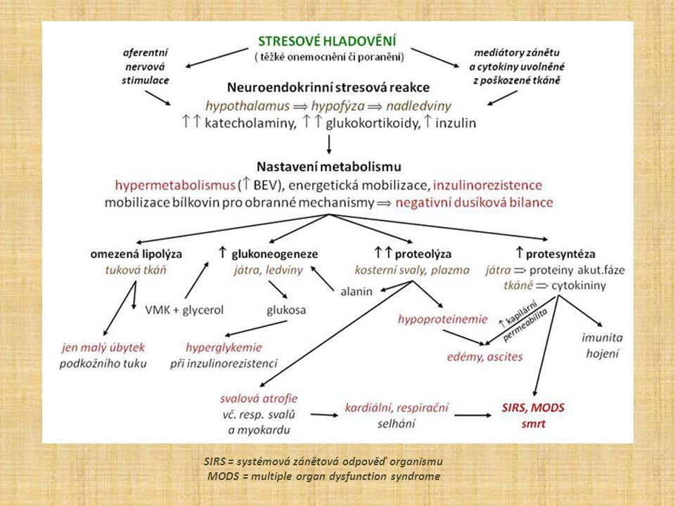 SIRS = systémová zánětová odpověď organismu MODS = multiple organ dysfunction syndrome