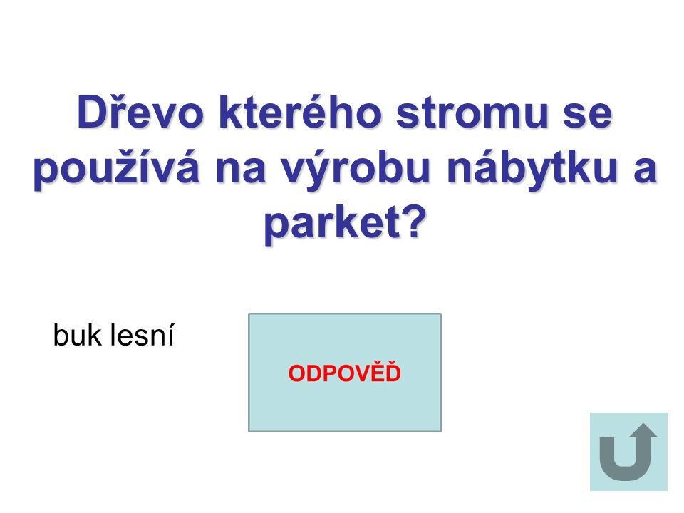 Jaké druhy javorů rostou v ČR? javor mléč javor klen javor babyka