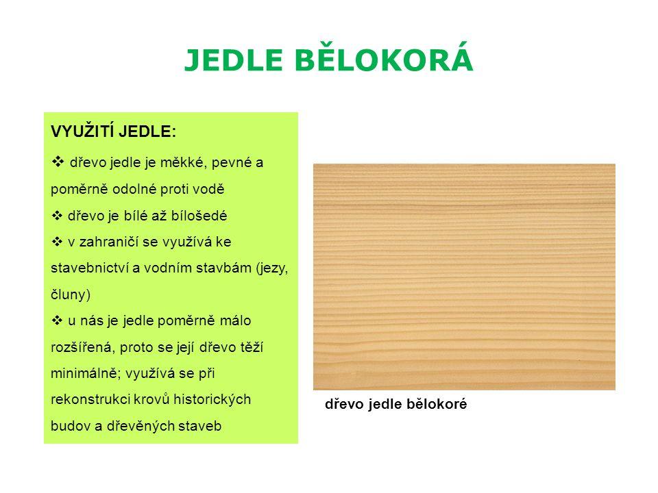 JEDLE BĚLOKORÁ VYUŽITÍ JEDLE:  dřevo jedle je měkké, pevné a poměrně odolné proti vodě  dřevo je bílé až bílošedé  v zahraničí se využívá ke staveb