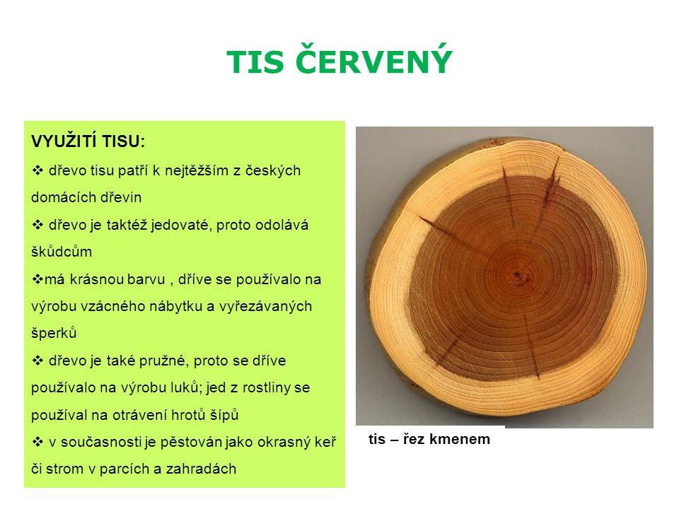 TIS ČERVENÝ VYUŽITÍ TISU:  dřevo tisu patří k nejtěžším z českých domácích dřevin  dřevo je taktéž jedovaté, proto odolává škůdcům  má krásnou barv