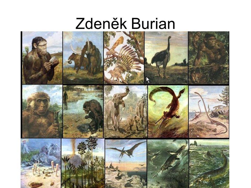 Samostatná práce Dle své představivosti si nakresli do sešitu pravěkého člověka jako kdysi Zdeněk Burian Například