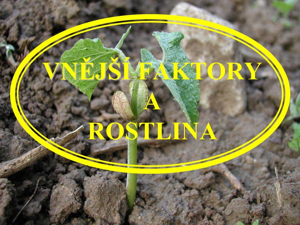 VNĚJŠÍ VNĚJŠÍ FAKTORY A ROSTLINA