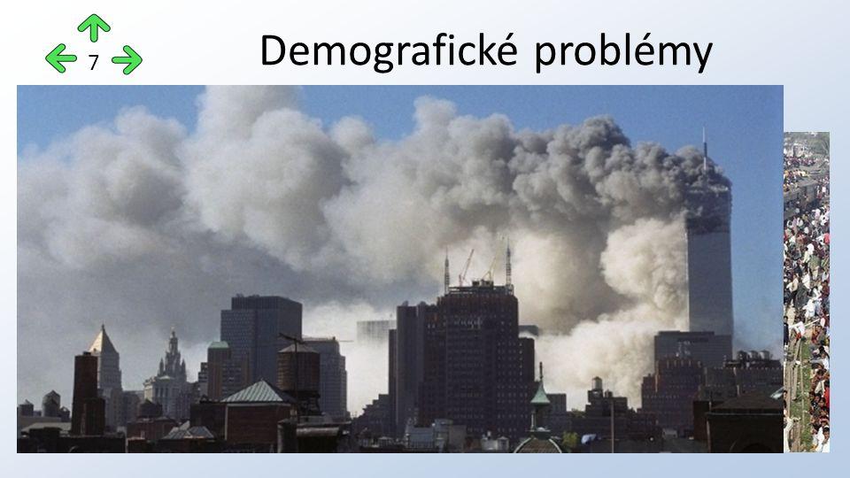 populační exploze migrace obyvatelstva (urbanizace, násilné přesuny) sociální patologie – alkoholismus, kouření, drogy nemoci negramotnost terorismus Demografické problémy 7