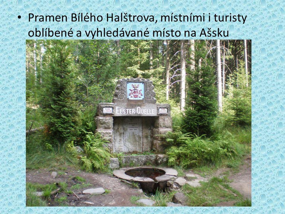 Pramen Bílého Halštrova, místními i turisty oblíbené a vyhledávané místo na Ašsku