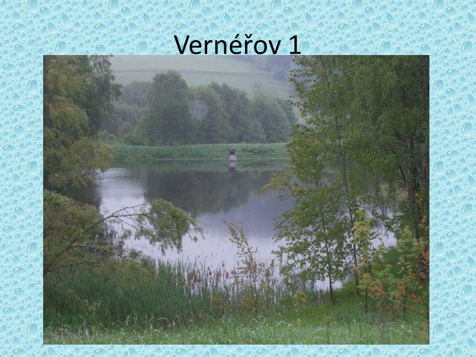 Vernéřov 1