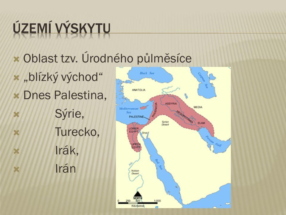 MLADŠÍ DOBA KAMENNÁ - NEOLIT 9 000 př.n.l.– 5 000 př.n.l.