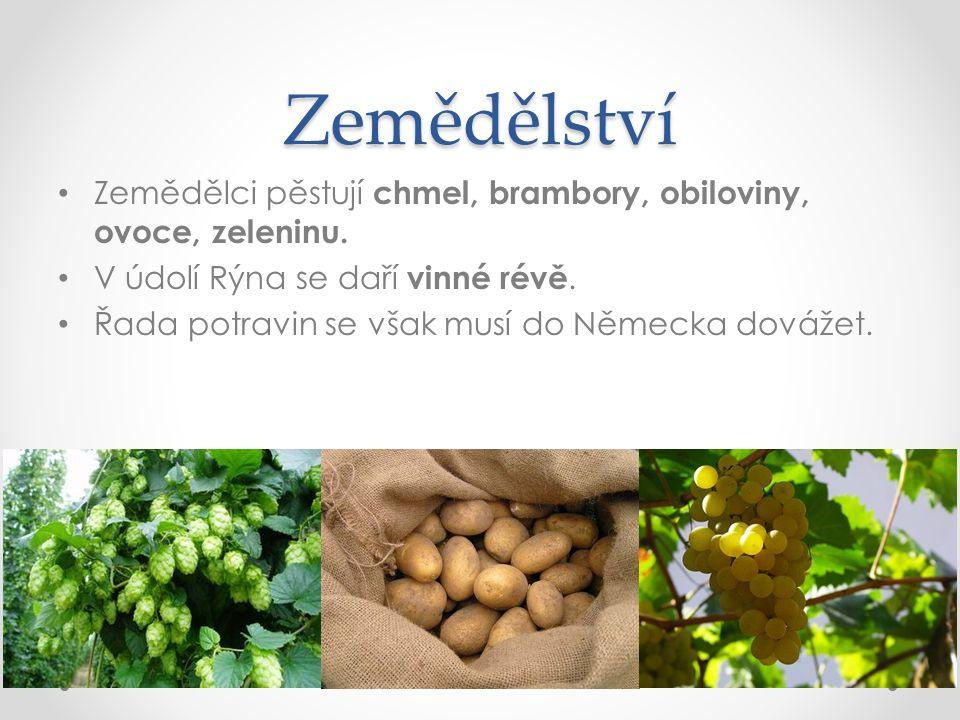 Zemědělství Zemědělci pěstují chmel, brambory, obiloviny, ovoce, zeleninu.
