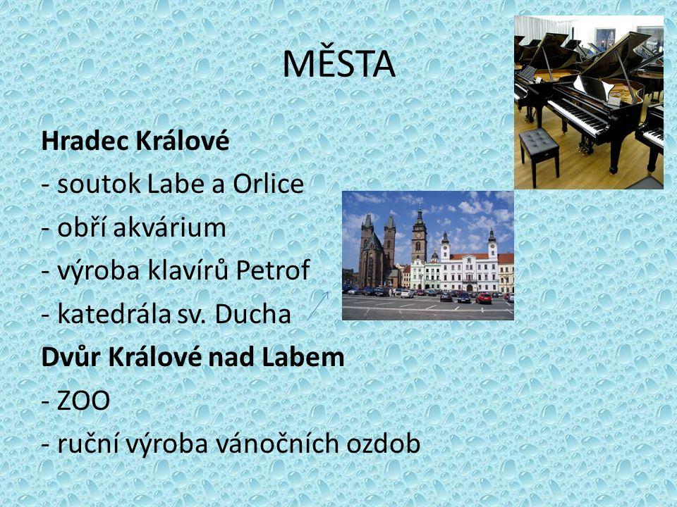 MĚSTA Hradec Králové - soutok Labe a Orlice - obří akvárium - výroba klavírů Petrof - katedrála sv. Ducha Dvůr Králové nad Labem - ZOO - ruční výroba