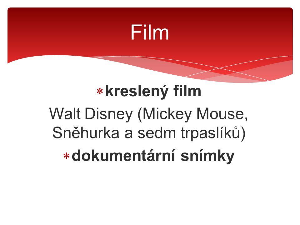  kreslený film Walt Disney (Mickey Mouse, Sněhurka a sedm trpaslíků)  dokumentární snímky  snímky sloužící k propagandě (Německo, Sovětský svaz) Film