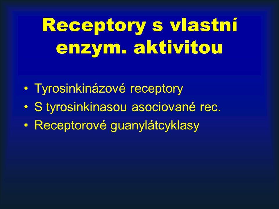 Receptory s vlastní enzym. aktivitou Tyrosinkinázové receptory S tyrosinkinasou asociované rec.