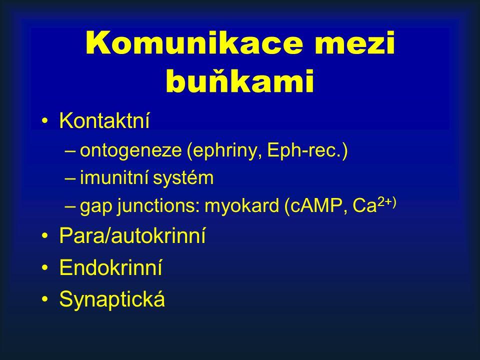 Komunikace mezi buňkami Kontaktní –ontogeneze (ephriny, Eph-rec.) –imunitní systém –gap junctions: myokard (cAMP, Ca 2+) Para/autokrinní Endokrinní Synaptická