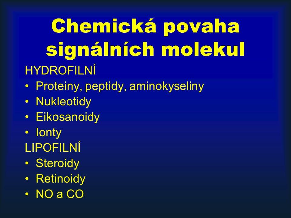 Chemická povaha signálních molekul HYDROFILNÍ Proteiny, peptidy, aminokyseliny Nukleotidy Eikosanoidy Ionty LIPOFILNÍ Steroidy Retinoidy NO a CO