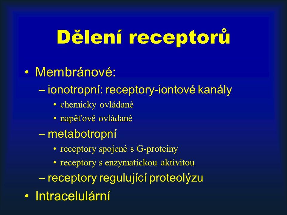 Dělení receptorů Membránové: –ionotropní: receptory-iontové kanály chemicky ovládané napěťově ovládané –metabotropní receptory spojené s G-proteiny receptory s enzymatickou aktivitou –receptory regulující proteolýzu Intracelulární