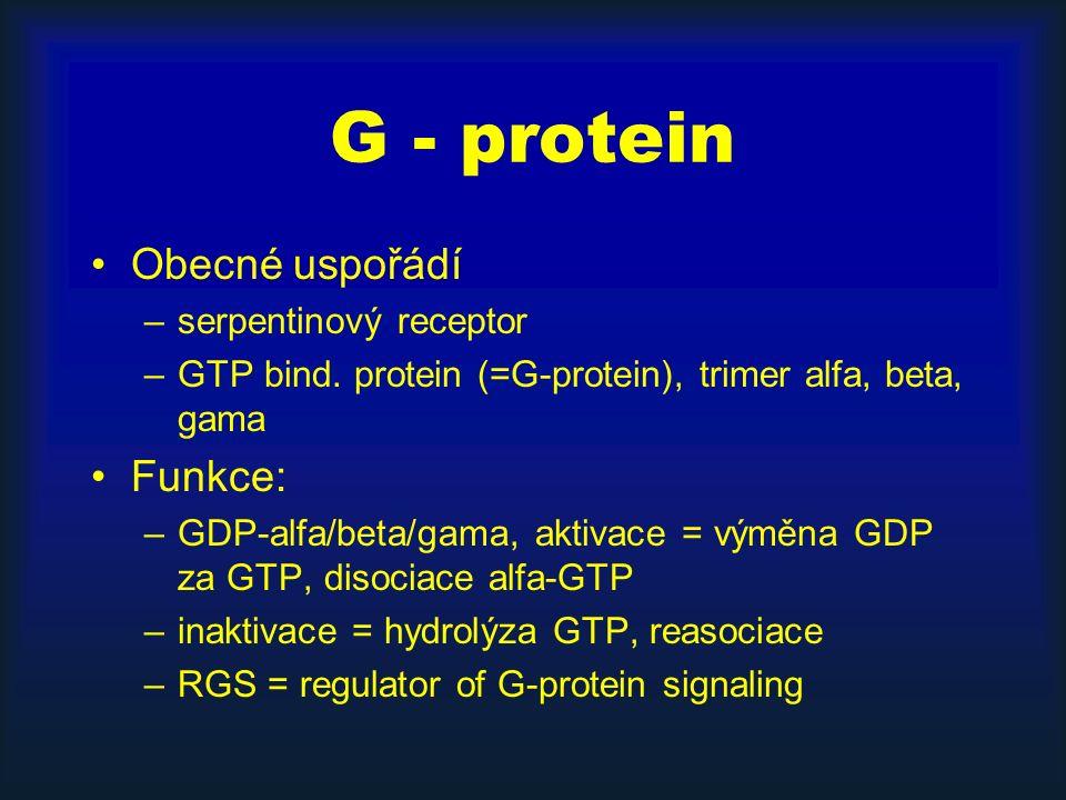 G - protein Obecné uspořádí –serpentinový receptor –GTP bind. protein (=G-protein), trimer alfa, beta, gama Funkce: –GDP-alfa/beta/gama, aktivace = vý