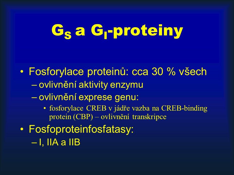 S tyrosinkinázou asociované receptory Aktivují cytosolické tyrosinkinázy Příklady: –rodina src-proteinkináz –FAK (focal adhesion kinase) spojená s integrinovými receptory –Jak-STAT cesta do jádra: cytokinové receptory – Janus kinasy – STAT reg.